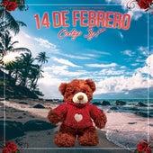 14 De Febrero by Codigo 3y7