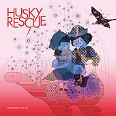 Diamonds in the Sky by Husky Rescue