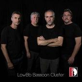 LowB-Flat Bassoon Cluster de Giorgio Mandolesi