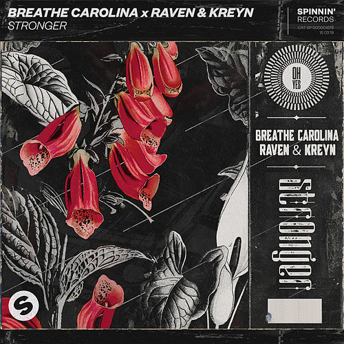 Stronger by Breathe Carolina
