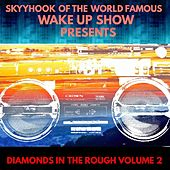 Diamonds in the Rough, Vol. 2 (Skyyhook of the World Famous Wake Up Show Presents) by Various Artists