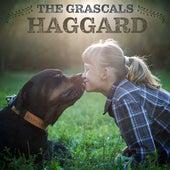 Haggard de The Grascals