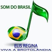 Viva a Brotolândia (Som do Brasil) von Elis Regina