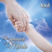 Por Manos de María by Jésed