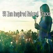 55 Zen Inspired Natural Tracks von Massage Therapy Music