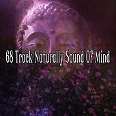 68 Track Naturally Sound of Mind by Classical Study Music (1)