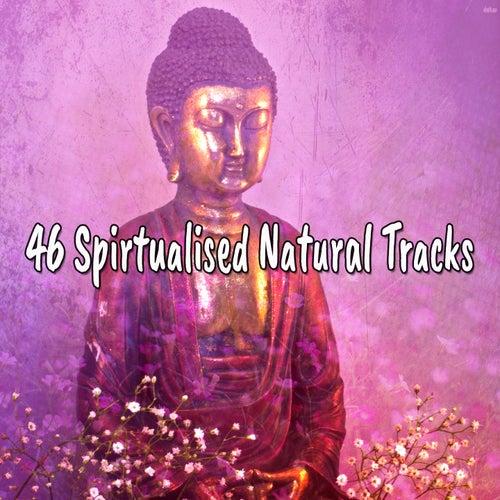 46 Spirtualised Natural Tracks von Entspannungsmusik