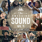 The Emerging Sound, Vol. 4 by People