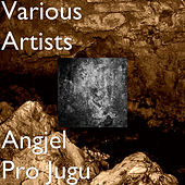 Angjel Pro Jugu by Various Artists