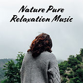 Nature Pure Relaxation Music: New Age 15 Soothing Songs for Calm & Relax After Tough Day de Sounds Of Nature