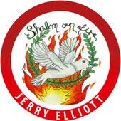 Shalom on Fire by Jerry Elliott