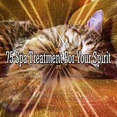 75 Spa Treatment for Your Spirit by Ocean Sounds Collection (1)