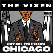 Chicago by Vixen