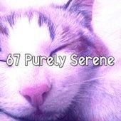 67 Purely Serene von Rockabye Lullaby