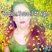 65 Calm Yourself at Night de White Noise Relaxation (1)
