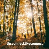 Disconnect2reconnect de CMK Beats