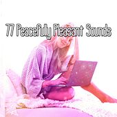 77 Peacefully Pleasant Sounds de White Noise Babies