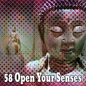 58 Open Your Senses von Lullabies for Deep Meditation