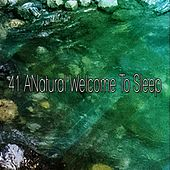 41 A Natural Welcome to Sleep by White Noise for Babies
