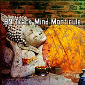 80 Track Mind Monticule de Zen Meditation and Natural White Noise and New Age Deep Massage