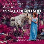 Trilha Sonora do Filme A Chave do Vale Encantado de Oswaldo Montenegro