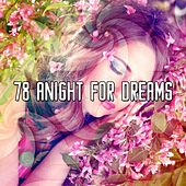 78 A Night for Dreams by Water Sound Natural White Noise