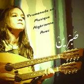 Promenade en musique Algérienne by Various Artists