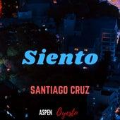 Siento de Santiago Cruz