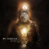 The Squatch Expands Life (Remixes) de Mr Squatch