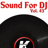 Sound For DJ Vol 43 de Various Artists