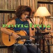 Registros: Regional do Beija Flor de Ana Costa