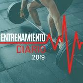 Entrenamiento Diario 2019 - La Mejor Música Electrónica Correr y Hacer Ejercicio en Casa o en el Gimnasio de Musica para Entrenar Dj