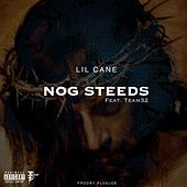 Nog Steeds by Lil Cane