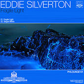 Fragile Light by Eddie Silverton