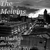 In the Flesh (The New Australian Mix) de Melvins