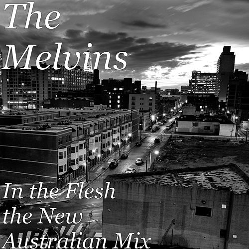 In the Flesh (The New Australian Mix) by Melvins