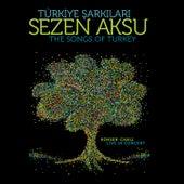 Türkiye Şarkıları (Canlı) de Sezen Aksu
