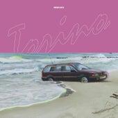 Torino Remixed de Sonar