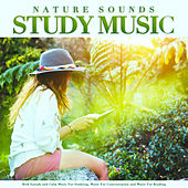 Nature Sounds Study Music: Bird Sounds and Calm Music For Studying, Music For Concentration and Music For Reading by Einstein Study Music Academy (1)