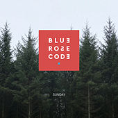 Sunday by Blue Rose Code