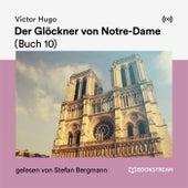 Der Glöckner von Notre-Dame (Buch 10) de Victor Hugo