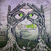 Vibe Solid, Vol. 2 by Various Artists