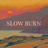Slow Burn by Joe Hertler