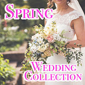 Spring Wedding Collection by Various Artists