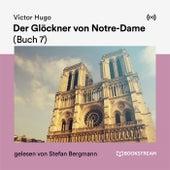 Der Glöckner von Notre-Dame (Buch 7) de Victor Hugo