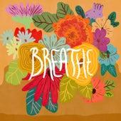 Breathe by Bravo