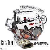Stuck In My Ways by Big Trell