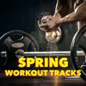 Spring Workout Tracks de Various Artists