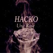 Une Rose de Hacko