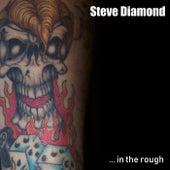 ..In The Rough von Steve Diamond